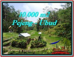 Beautiful 10,000 m2 LAND IN Ubud Tampak Siring FOR SALE TJUB519