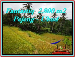 Beautiful PROPERTY 2,800 m2 LAND FOR SALE IN Ubud Tampak Siring BALI TJUB521