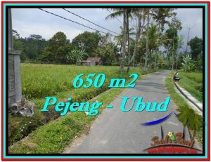 Magnificent UBUD LAND FOR SALE TJUB522