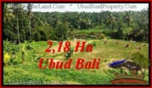 Affordable PROPERTY LAND IN UBUD FOR SALE TJUB546