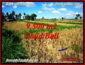 Exotic PROPERTY LAND FOR SALE IN UBUD BALI TJUB548