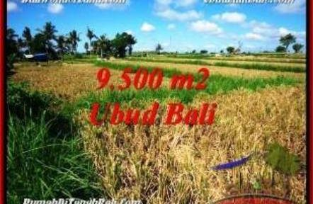 Exotic PROPERTY LAND FOR SALE IN UBUD BALI TJUB548