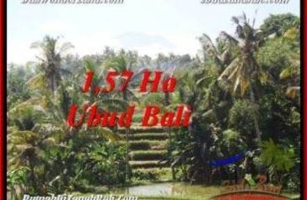Exotic PROPERTY UBUD LAND FOR SALE TJUB549