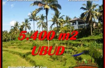 Magnificent PROPERTY 5,400 m2 LAND IN Ubud Tegalalang FOR SALE TJUB550