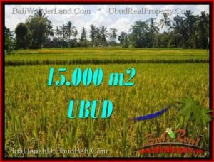 Ubud Tegalalang BALI LAND FOR SALE TJUB551