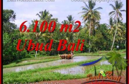 Exotic LAND SALE IN Ubud Tegalalang BALI TJUB552