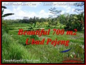 Affordable PROPERTY 700 m2 LAND SALE IN UBUD BALI TJUB534