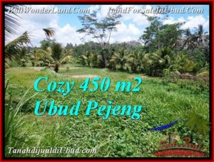 Magnificent PROPERTY 450 m2 LAND FOR SALE IN Ubud Pejeng TJUB535