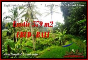 Affordable PROPERTY 579 m2 LAND SALE IN UBUD BALI TJUB538