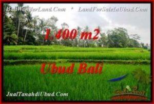 Affordable LAND SALE IN Ubud Pejeng BALI TJUB539