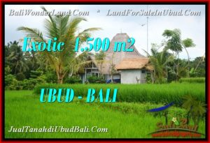 Magnificent 1,500 m2 LAND FOR SALE IN Ubud Pejeng TJUB541