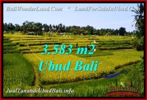 Beautiful LAND IN UBUD FOR SALE TJUB542
