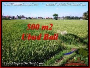 FOR SALE Affordable PROPERTY 500 m2 LAND IN UBUD BALI TJUB545