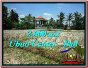 Affordable LAND FOR SALE IN UBUD TJUB524