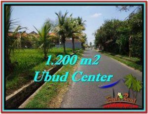 Magnificent 1,200 m2 LAND FOR SALE IN Sentral Ubud TJUB525