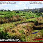 Beautiful UBUD LAND FOR SALE TJUB549