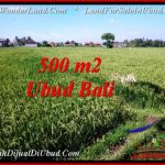 FOR SALE Magnificent 500 m2 LAND IN UBUD BALI TJUB545