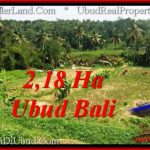 Beautiful LAND SALE IN UBUD TJUB546