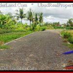 Beautiful PROPERTY 6,100 m2 LAND IN Ubud Pejeng FOR SALE TJUB547