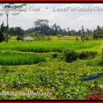 Beautiful PROPERTY LAND SALE IN UBUD BALI TJUB542