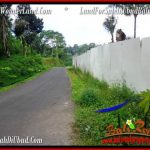 Beautiful PROPERTY 4,040 m2 LAND SALE IN Ubud Tegalalang TJUB555