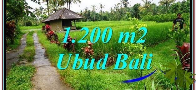 Magnificent UBUD BALI 1,200 m2 LAND FOR SALE TJUB559