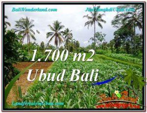 Beautiful 1,700 m2 LAND SALE IN UBUD BALI TJUB560