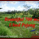 Magnificent LAND IN UBUD FOR SALE TJUB534