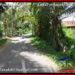 FOR SALE Exotic PROPERTY LAND IN UBUD TJUB536