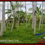 Affordable 1,400 m2 LAND SALE IN UBUD BALI TJUB539