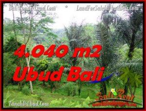 FOR SALE Exotic 4,040 m2 LAND IN UBUD BALI TJUB555