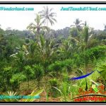 Magnificent PROPERTY 1,500 m2 LAND SALE IN Ubud Tegalalang TJUB556