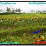 FOR SALE Beautiful PROPERTY 715 m2 LAND IN Ubud Tampak Siring TJUB557