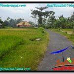 FOR SALE LAND IN Ubud Tampak Siring BALI TJUB558