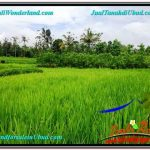 Exotic LAND FOR SALE IN UBUD TJUB559