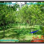 Magnificent LAND IN UBUD FOR SALE TJUB560