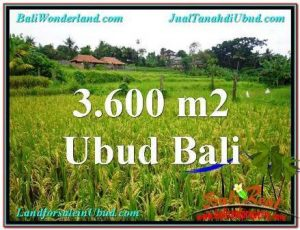 Magnificent Sentral Ubud BALI LAND FOR SALE TJUB566