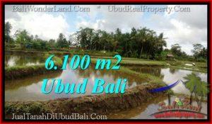 Beautiful PROPERTY Ubud Pejeng 6,100 m2 LAND FOR SALE TJUB547
