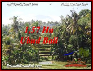 FOR SALE Magnificent PROPERTY 15,700 m2 LAND IN Sentral Ubud TJUB549