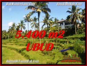 Beautiful PROPERTY 5,400 m2 LAND IN Ubud Tegalalang BALI FOR SALE TJUB550