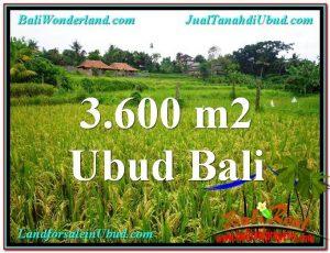 Beautiful 3,600 m2 LAND IN UBUD BALI FOR SALE TJUB566