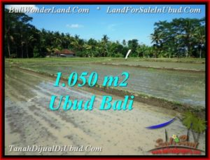 Magnificent LAND IN UBUD FOR SALE TJUB544