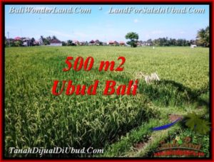 Affordable 500 m2 LAND SALE IN UBUD BALI TJUB545