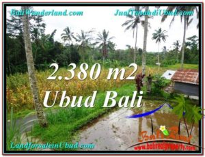 Beautiful LAND FOR SALE IN UBUD TJUB567