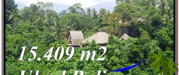 Magnificent Sentral Ubud BALI LAND FOR SALE TJUB568