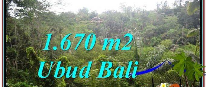 Affordable PROPERTY LAND IN UBUD FOR SALE TJUB569