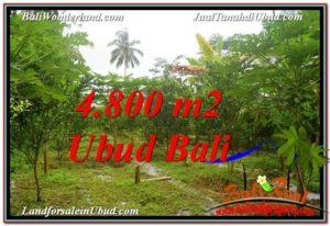Exotic PROPERTY UBUD LAND FOR SALE TJUB571