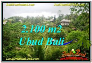 FOR SALE Magnificent PROPERTY 2,100 m2 LAND IN UBUD BALI TJUB572