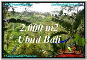 Magnificent PROPERTY LAND SALE IN UBUD TJUB573