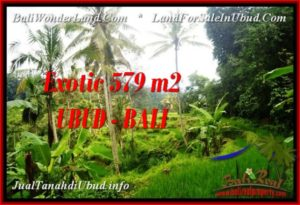 Affordable PROPERTY Ubud Tegalalang 579 m2 LAND FOR SALE TJUB538